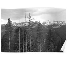 Rocky Mountains Black and White Poster