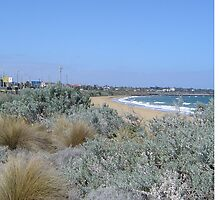 Hampton Beach - nr Milanos - Victoria - Australia by bayside2