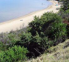 Half Moon Beach - Black Rock - Victoria - Australia by bayside2