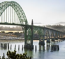 Ghosty Morning In Newport Oregon by Agro Films