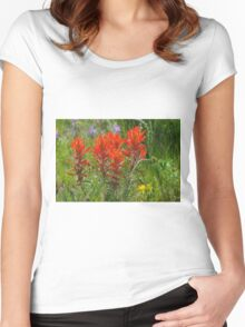 Indian Paint Brush Women's Fitted Scoop T-Shirt