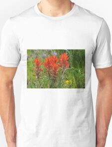 Indian Paint Brush T-Shirt