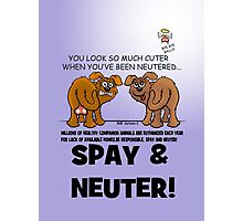 SPAY AND NEUTER ! Photographic Print