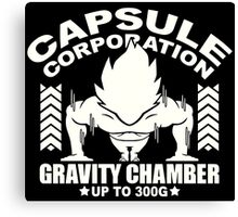 Gravity Chamber Canvas Print