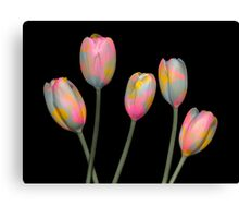 Psychedelic Tulips Canvas Print