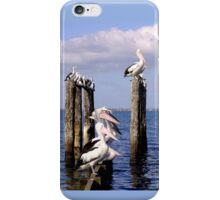 Beaumaris Bay - birdlife - Victoria - Australia iPhone Case/Skin