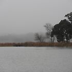 Winter by the Lake, Belconnen, Australia. by kaysharp