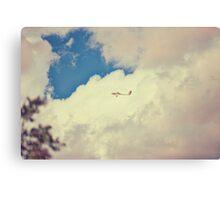 Grob109 In Flight Canvas Print