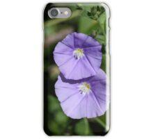 Flowers of a blue rock bindweed (Convolvulus sabatius) iPhone Case/Skin