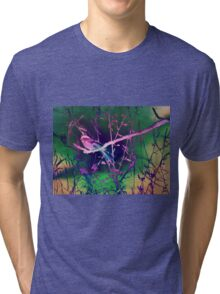 Pretty Bird Tri-blend T-Shirt