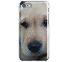 Guide puppy iPhone Case/Skin