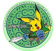 Linkachu Photographic Print