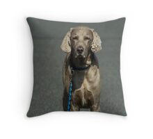 A patient pooch Throw Pillow