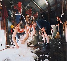 Shearers at work in circa 1830's shearing shed by Ronald Rockman