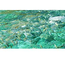 Water Ripples and spring fish Photographic Print