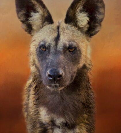 African wild dog. Sticker