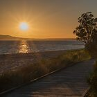 Sunshine Pathway by WayneG57