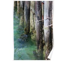 Seal Harbor Dock Pilings 3 Poster