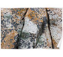 Acadia Granite 5 Poster