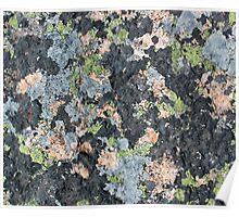 Acadia Granite 7 Poster