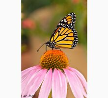Viceroy Butterfly on a Purple Coneflower Unisex T-Shirt