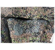 Acadia Granite 10 Poster