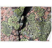 Acadia Granite 15 Poster
