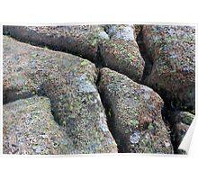 Acadia Granite 19 Poster