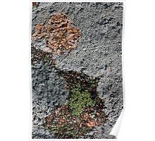 Acadia Granite 24 Poster