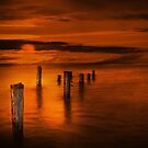 Golden by timpr