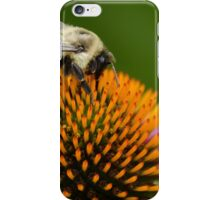 Bee 4 iPhone Case/Skin