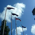 Flags at City of Wyndham Town Hall, Vic. Australia by EdsMum