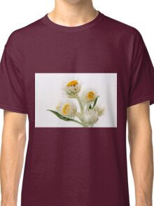 Helichrysium Elatum - White Paper Daisy Classic T-Shirt