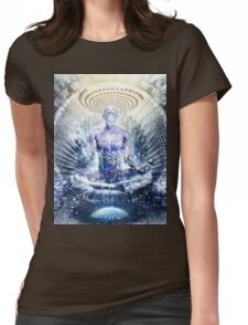 Awake Could Be So Beautiful, 2011 Womens Fitted T-Shirt