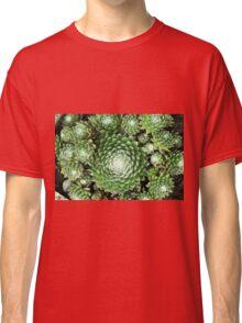 Little Succulents - Terrarium Classic T-Shirt