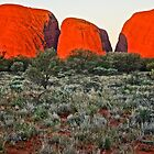 Kata Tjuta Sunset 3 by D-GaP