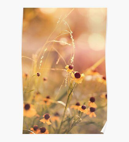 Yellow Flowers Childhood Memories Poster