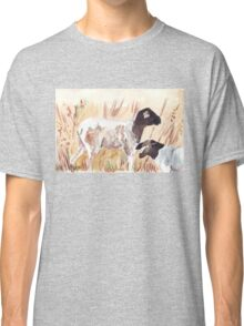 Dorpers Classic T-Shirt