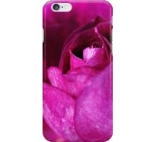 Natures Painting iPhone Case/Skin