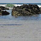 Rocky Waves by Judi Rustage