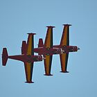 Diables Rouges Ladder Formation by mike  jordan.