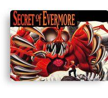 Secret Of Evermore Canvas Print