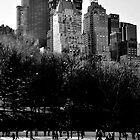 Ice Skating in Central Park by Leanne Churchill