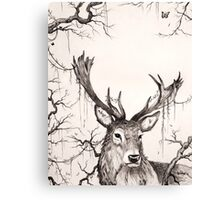 Within The Sleeping Forest  Canvas Print