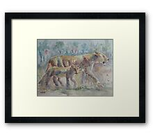 The Lions of Africa 2 Framed Print