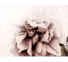 The Heart Remembers Photographic Print