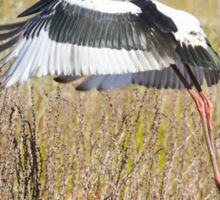 Stork Liftoff Sticker