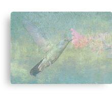 Hummingbird Tune Canvas Print