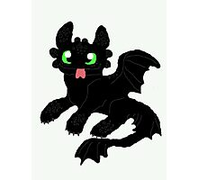 toothless  Photographic Print