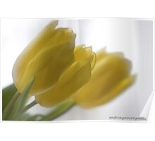 ❤❤❤ Frasi Belle Sulla Vita . Mellow yellow. Be sure to wear flowers in your hair! Featured in Tulips. Poster